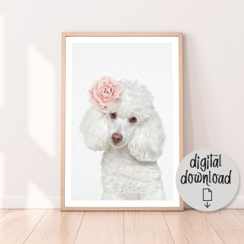 Rose Poodle Download Print