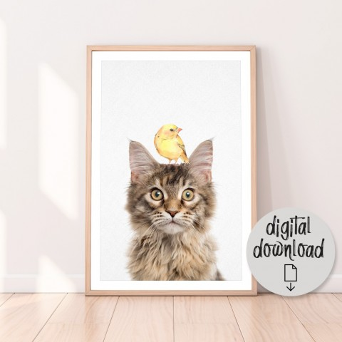 Maine Coon Cat Bird Download Print