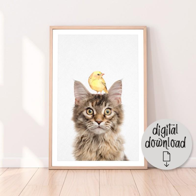 Maine Coon Cat Bird Download Print
