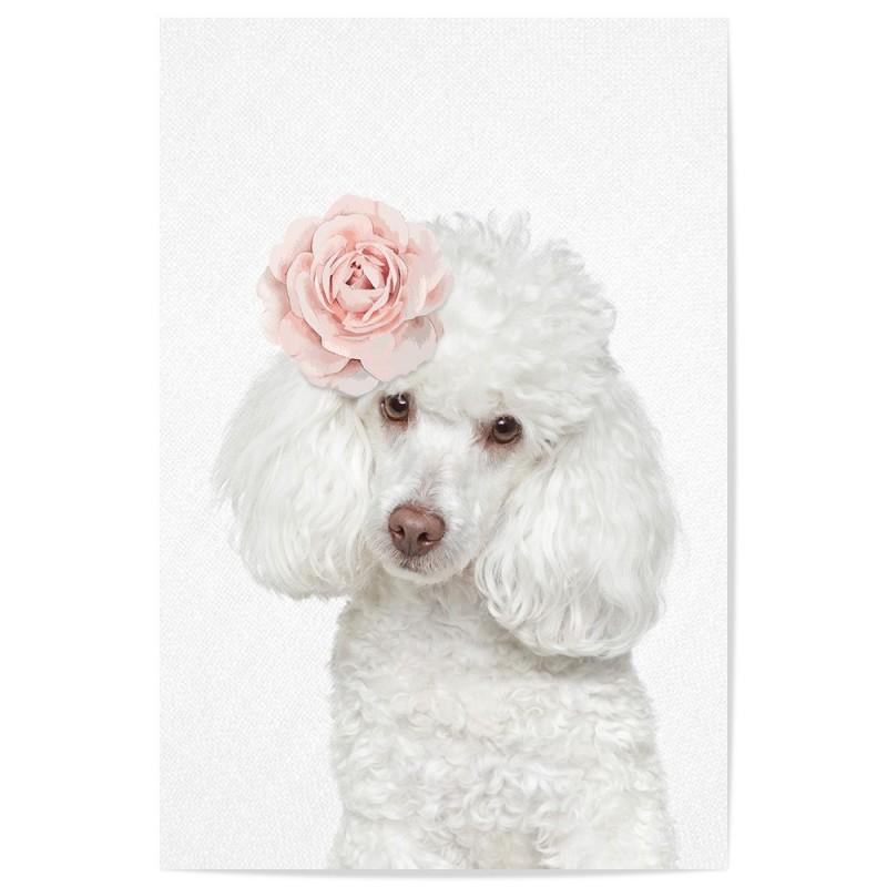 Rose Poodle Art Print