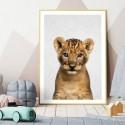 Hello Lion Cub Art Print
