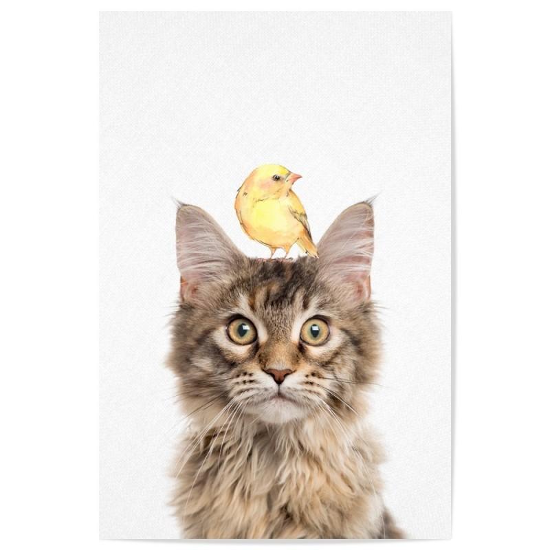 Maine Coon Cat Bird Art Print