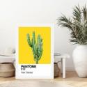 Your Cactus Art Print
