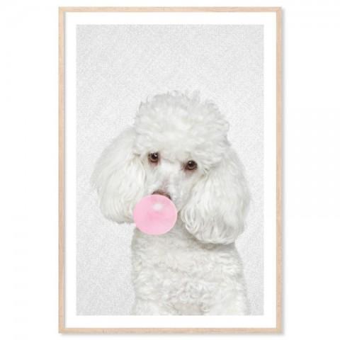 Bubblegum Poodle Art Print