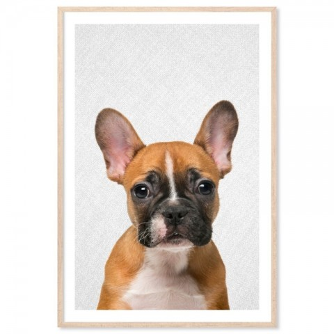 Hello French Bulldog Art Print