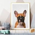 Hello French Bulldog Art Print