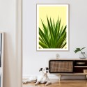 Agave Succulent Plant Yellow Download Print