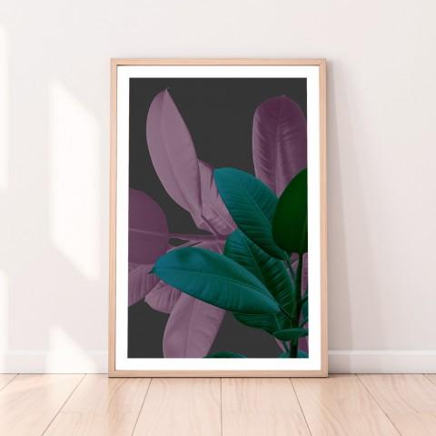 Ficus Rubber Plant Charcoal Download Print