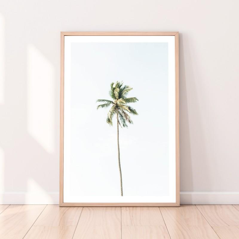 Palm Tree Download Print