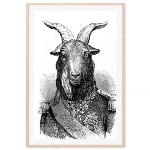 General Goat Art Print