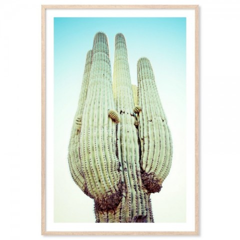 Blue Desert Cactus Art Print