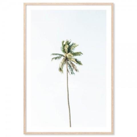 Beach Palm Tree Art Print