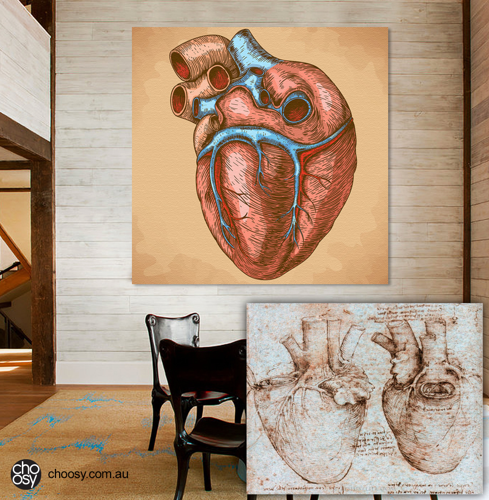 Anatomical Heart Art Prints and Posters That Make A Room Feel Alive